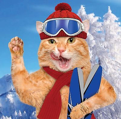 6 x Christmas Cards  Pack - Comedy Skiing Ginger Cat Alpine Feline & Free Post!