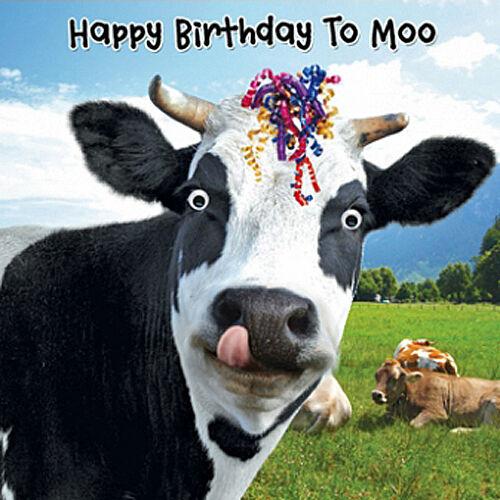 Funny Cow & Streamers Birthday Card Happy Birthday To Moo ...