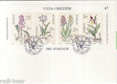 Wilde orchidee nürnberg