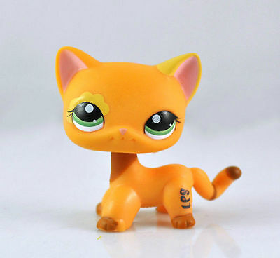 Short Hair Cat Littlest Pet Animal child girl boy figure loose cute LPS809