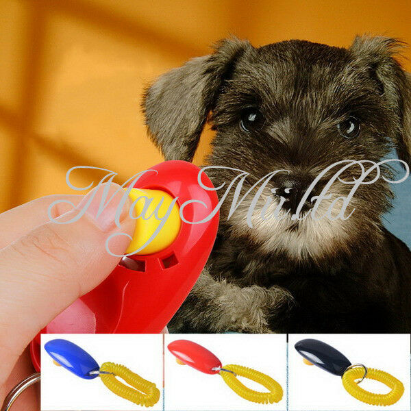 Button Puppy Dog Pet Click Clicker Training Trainer Aid Wrist Strap M