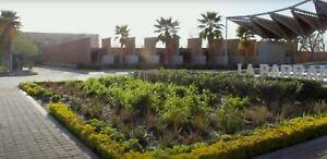 Torreón terreno fraccionamiento nuevo residencial naturaleza nogales 500m2 diseño casa gratis
