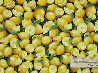 Sliced Lemons Farmer Johns Garden Party Fabric By The 1/2 Yard 120-13321