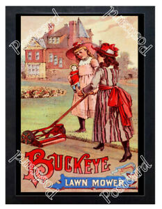 Historic-Buckeye-Lawn-Mower-Advertising-Postcard