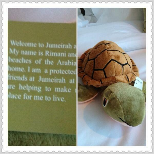 Rimani - Turtle - Soft Toy - Jumeirah - Sizes Large & Small available