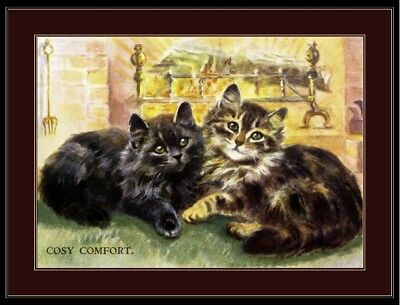 English Picture Persian Tabby Kitten Cat Art Print