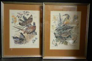Vintage-Set-of-2-Framed-amp-Matted-Arthur-Singer-Game-Bird-Prints-Very-Good-Con