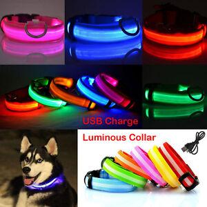 UK USB Rechargable LED Dog Pet Collar Flashing Luminous Safety Light Up Nylon