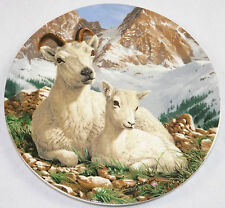 Dall Sheep The Heritage Collection Royal Grafton Fine Bone China Plate Certified