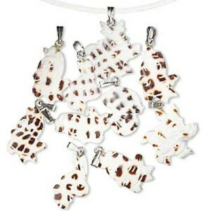 D5188CL-Charm-Pendant-Mix-Shell-Cowrie-Natural-Grilled-White-Ivory-Bail-10-Qty