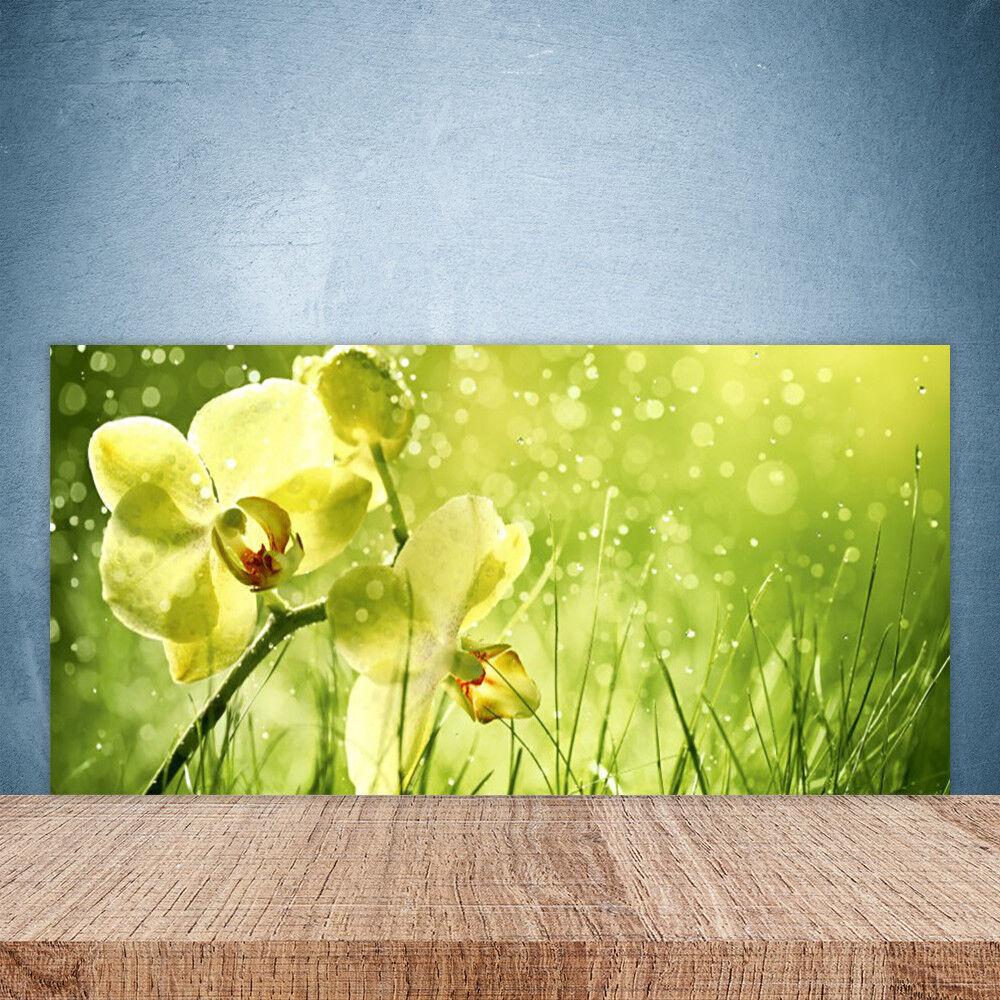 Crédence de cuisine en verre Panneau Paroi 100x50 Floral Fleurs Herbe