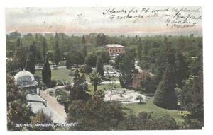 Postcard South Australia View In Botanic Garden Adelaide Sa Antique 1907 Ebay