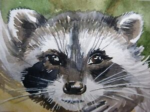 Painting Raccoon Face Nature Animals ACEO Art   | eBay