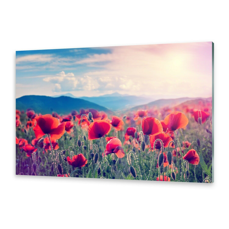 Acrylglasbilder Wandbild aus Plexiglas® Bild MohnBlaumen