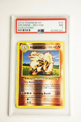 4x Pokemon XY Evolutions Rattata 66//108  Common Card