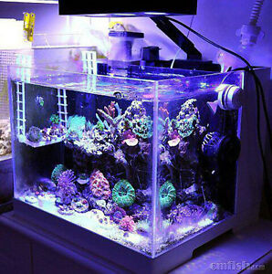 Image is loading LED-light-coral-grow-marine-reef-tank-white- : led reef tank lighting - azcodes.com