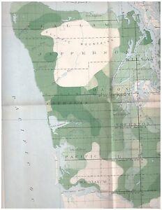 1898 color map Western Washington Timber Density 16x20 | eBay