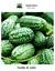 Melothria-scabra-Sandia-de-Raton-15-semillas-Seeds-cucamelon