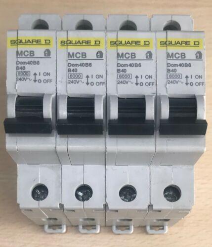 SQUARE D ~ 40 Amp ~ type B ~ 6kA ~ MCB Disjoncteur ~ domae ~ DOM40B6