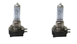 Headlight Bulb-EX Eiko H11B
