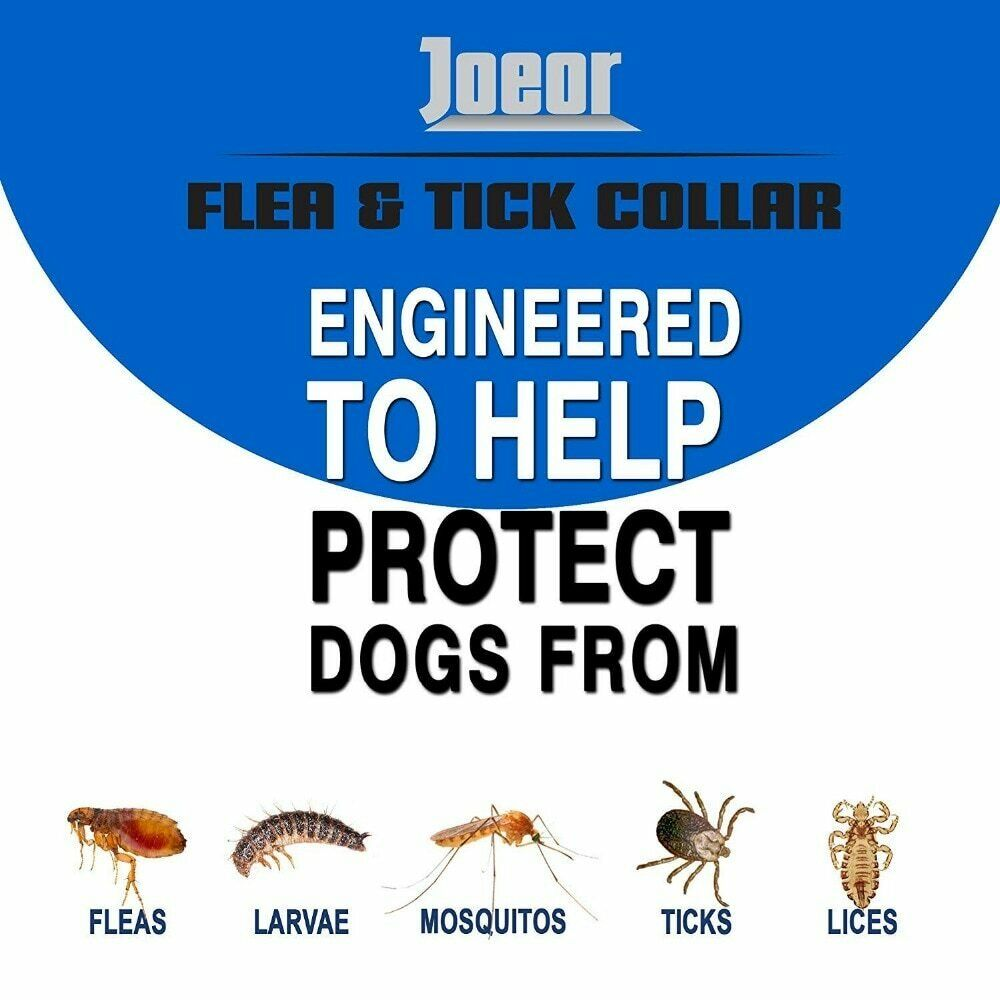 DEWEL Seisso Flea And Tick Control Collar for Medium Large Dog 1 Year Protection 8