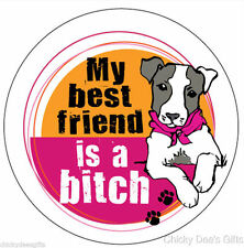 Mad Mags Car Magnet DOGS - MY BEST FRIEND IS A Bitch