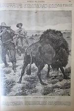 JOURNAL DES VOYAGES N° 697 de 1890 AMERIQUE CHASSE AUX BISONS / BUSH AUSTRALIEN