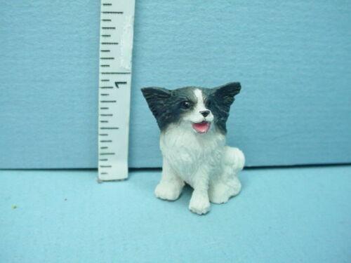 Miniature Papillion Dog Pup #A859 Falcon 1//12th Scale Resin