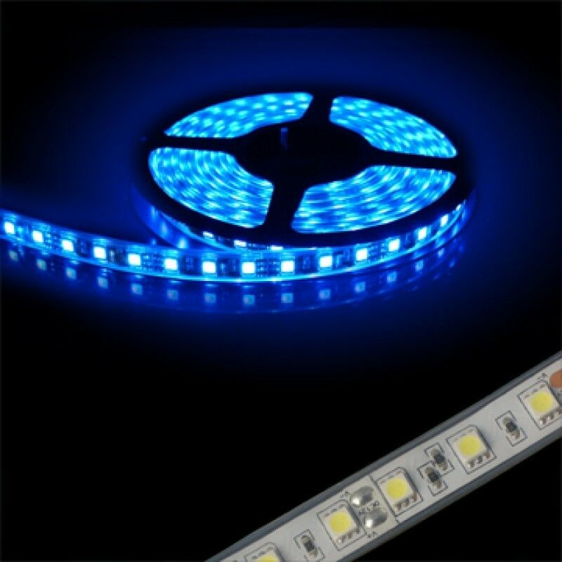 ON SPECIAL !Super Bright, waterproof, Blue, green ,red  & Cold White 5M 300 LED Flexible Light Strip