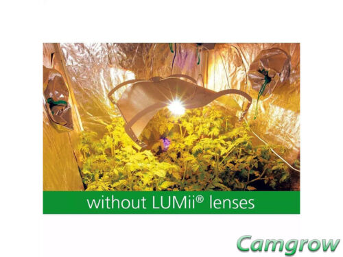 LUMii Grow Room Lenses Growroom Glasses Hydroponics Daylight Vision Anti Glare