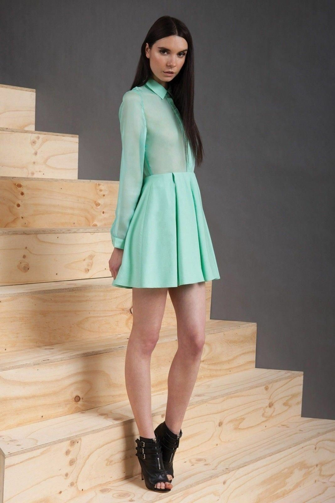NEW Designer Cameo Sheer Top Button Down Shelter Dress Shirt S GORGEOUS