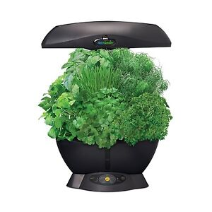 Miracle-Gro-AeroGarden-6-Indoor-Garden-with-Gourmet-Herb-Seed-Kit