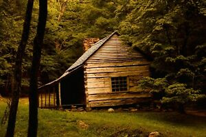 Cabin Autumn Hiking Forest Trees Nature Landscape HD POSTER