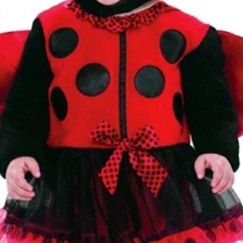 Bébé bug coccinelle insecte mignon livre semaine fancy dress costume 0-9 mois