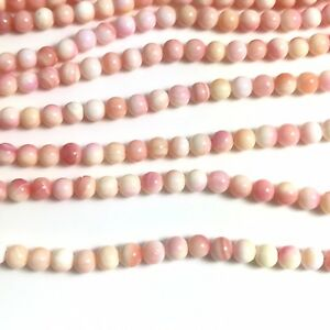 15-5-034-Natural-Pink-Queen-Conch-Shell-Round-Beads-4mm-NEW-DIY-Design-Rare