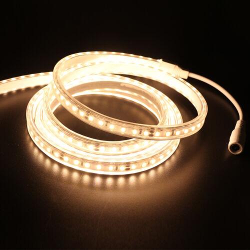 12V//24V LED Stripe Warmweiß Kaltweiß 120leds Band Leiste Streifen 2835 0.5-10m