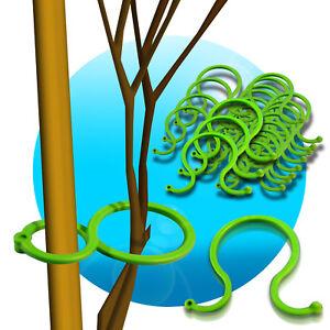 5-20-60-gross-Pflanzenbinder-Pflanzenclips-Pflanzenklammern-Pflanzenhalter