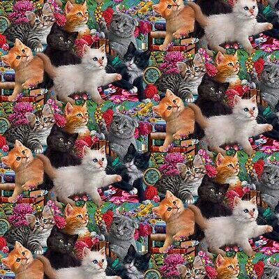 Animal Fabric Packed Cats Kittens Black C4121 Timeless Treasures YARD