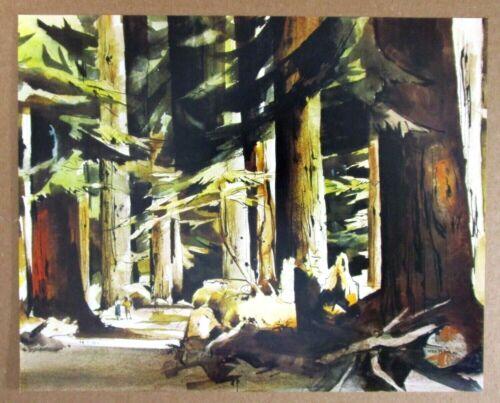 Vintage Art Print Giant Redwood Grove Peter McIntyre California Forest Trees