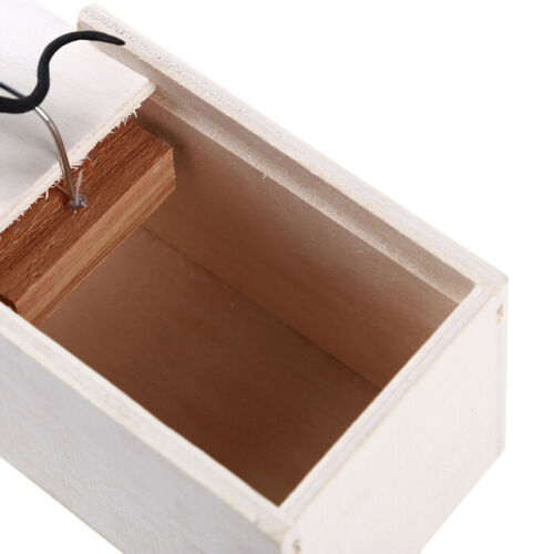 Scare Magic Props Brain Game Halloween Surprise Tricky Spider In Wooden Box HO3
