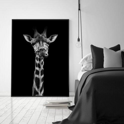 Black White Animal Poster Giraffe Lion Canvas Wall Art Print Nordic Modern Decor