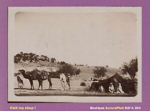 PHOTO-1890-ALGERIE-CAMPEMENT-DE-NOMADES-DROMADAIRES-AFRIQUE-DU-NORD-A204