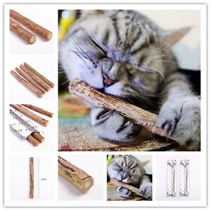 Cat-Natural-Molar-Toothpaste-Catnip-Stick-Cleaning-Teeth-Toy-Cat-Tasty-Snacks