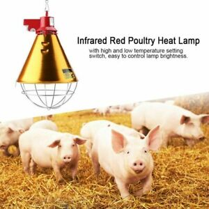 Infrared Red Heat Lamp Bulb Lampshade Light Poultry Chickens Pig Reptile Warmer Ebay