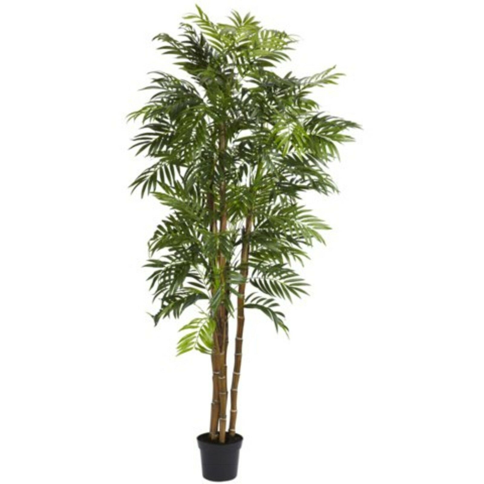 Decorative Natural Looking Artificial 6' Bella Palm Silk Tree Potted Faux Plants