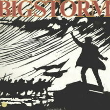 """12"""" LP Bigstorm Living In Exile (Don`t Look Down) 80`s Rock Sire Records"""