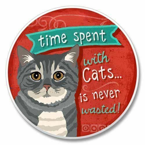 Time Spent with Cats Coaster for Car 03-290