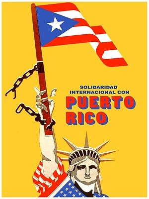 Puerto Rico Flag  24x36 inch rolled wall Poster
