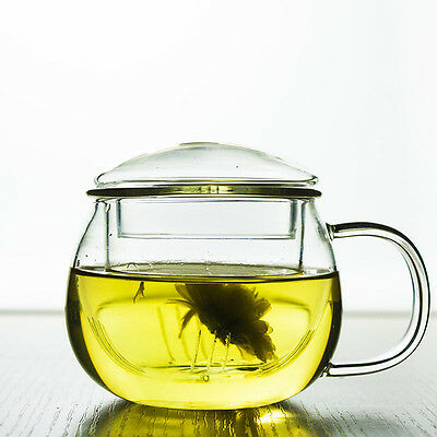 300ml Heatproof Clear Glass Herbal Tea Cup With Infuser Tea Mug  3 In 1  Set