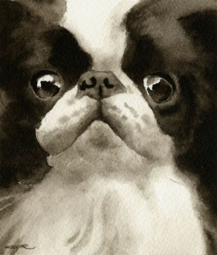Japanese Chin Art Print Sepia Watercolor 11 x 14 by Artist DJR